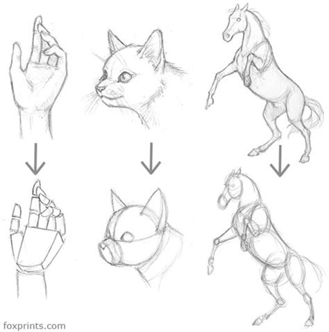 how to draw doodle characters ainessa character drawing tutorial