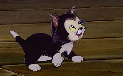 black cats are the best oh my disney awww