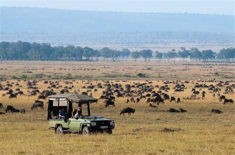 best safari in kenya best of kenya safari tours authentic east style