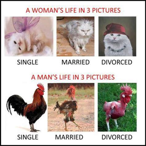 Divorce Guy Meme - woman vs man live in 3 pictures funny pictures quotes