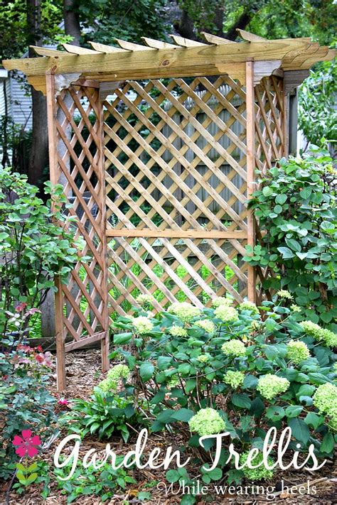 diy arbor trellis while wearing heels diy garden trellis