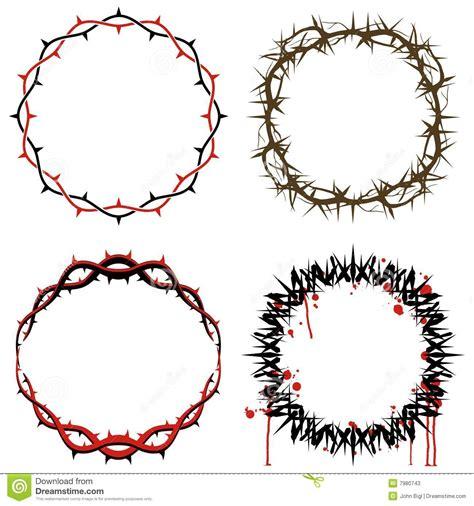 coroas de espinhos fotos de stock imagem 7980743