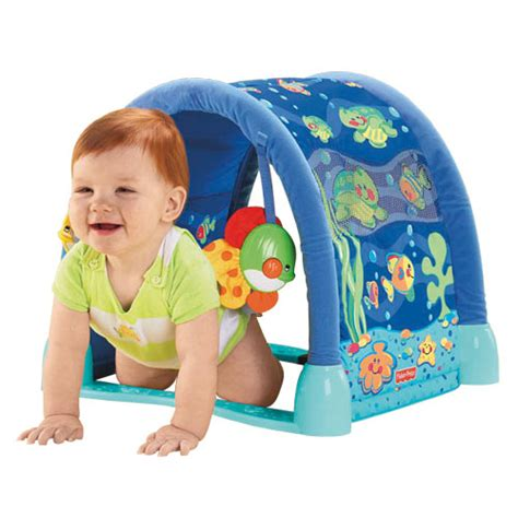 Fisher Price Play Mat Tunnel by The Nitpicky Consumer Comparing Baby Play Mats