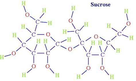 sucrose structural diagram sugars gondar design biology