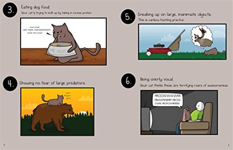 how to your to kill how to tell if your cat is plotting to kill you the oatmeal buy in uae