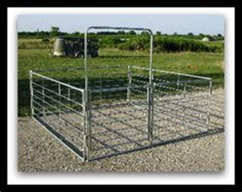 mini horse barns and stalls ♡ on pinterest | mini horses