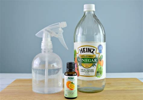 spray to prevent dogs from peeing in the house diy dog deterrent spray helps stop indoor accidents and chewing mom 4 real