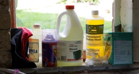 Chemical Detox At Home by Ditch Your Chemicals With Detox Your Home Swan Hill
