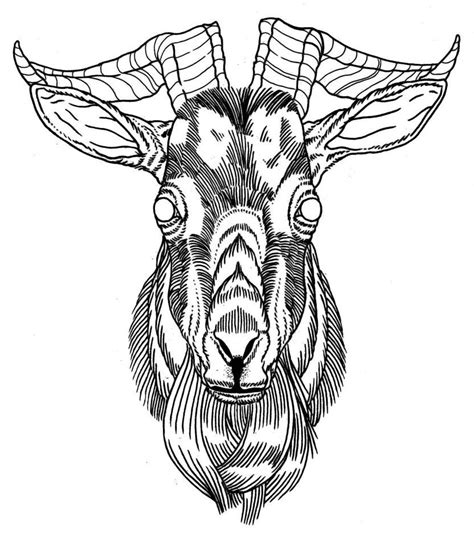 goat tattoo designs goat grey ink design my style tattoos