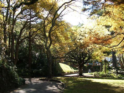 Botanical Garden Wiki Wellington Botanic Garden