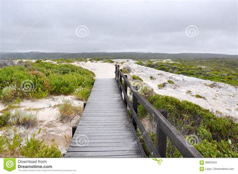 Boardwalk To White Cliff Point Stock Photo Image 68825022 The Rock Garden Green Bay