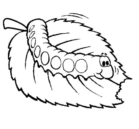 coloring pages for hungry caterpillar hungry caterpillar coloring page leaf coloring pages