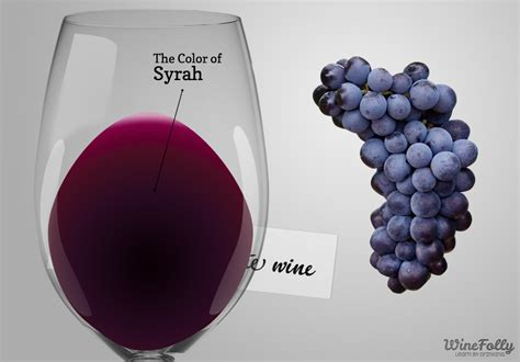 Mint Color by The Secrets To Syrah Wine Wine Folly