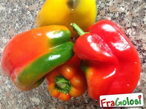 come cucinare il peperone come congelare i peperoni ricetta di fragolosi