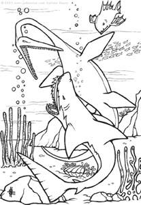 Free Printable Shark Coloring Pages For Kids sketch template