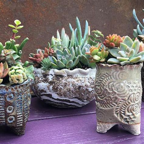 succulent garden turtle planter contemporary plants by zulily beautiful but odd planters odd planters garden pots