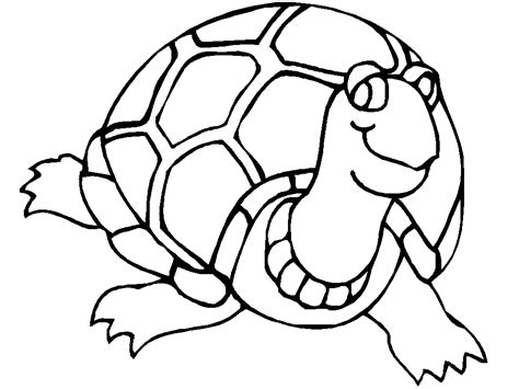 Turtle Color Page Free Printable Turtle Coloring Pages For Kids by Turtle Color Page