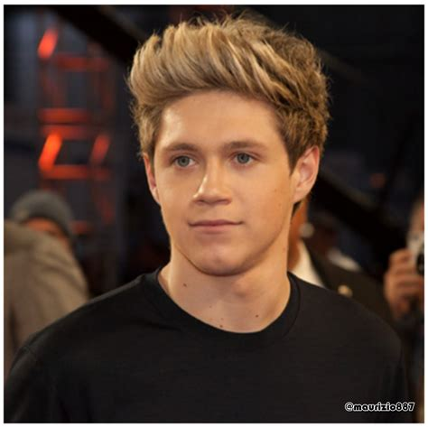 biografia de niall horan one direction biografia niall horan