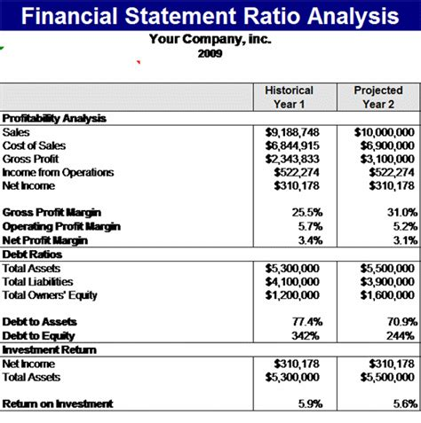 financial reports templates financial statement ratios analysis template
