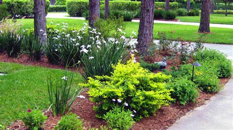 landscape design images northern inspired landscape design for ta fl
