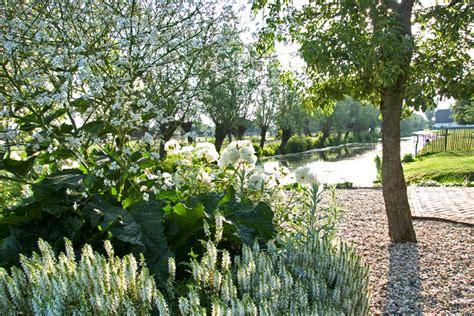 witte border bloemen witte bloementuin homeandgarden nl