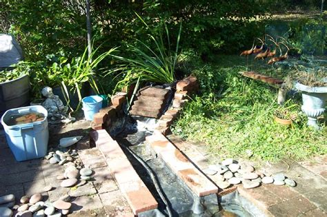 clean backyard pond backyard pond clean the waterfall