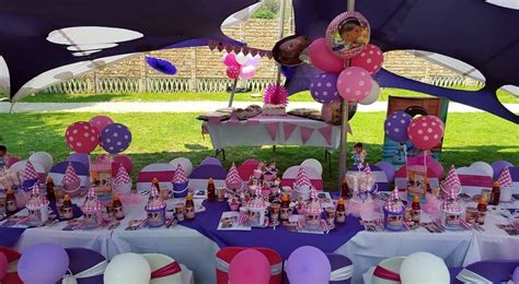 themed kiddies party decor doc mcstuffins party supplies