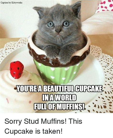 cupcake meme cupcake meme www imgkid the image kid has it