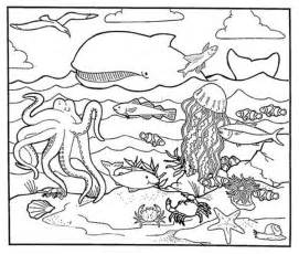 a healty habitat of sea animal coloring page download
