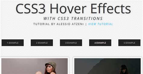 flat design hover effect beautiful css3 image hover effects web design beat