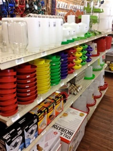arizona feeds country store | animal feed store tucson az