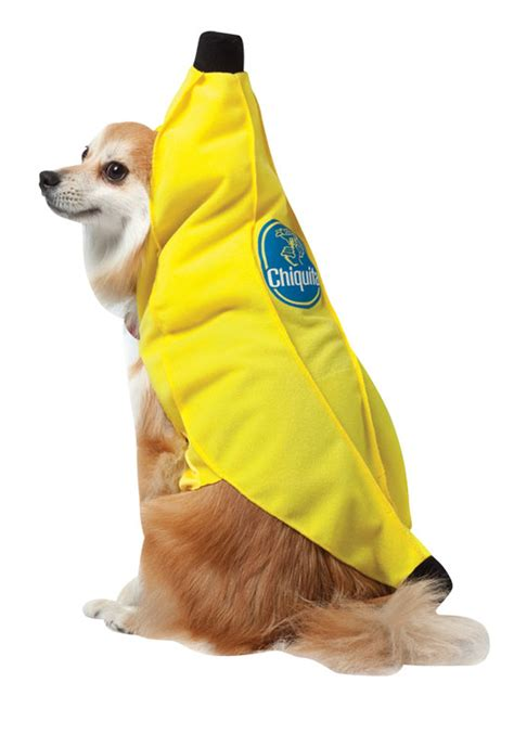 bananas for dogs chiquita banana costume