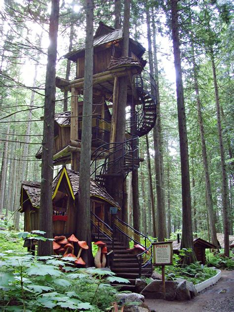 the tallest house in the world my search for a home the world s tallest treehouses