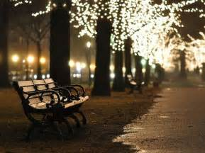 bench benches christmas lights night park image