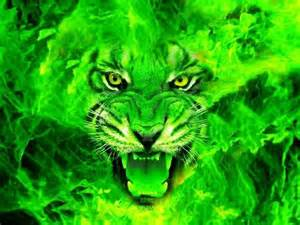 love this cool green cars green tiger face cool graphics