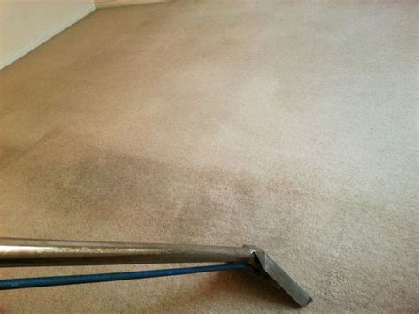 upholstery cleaning sheffield sheffield carpet cleaner carpet cleaning company in