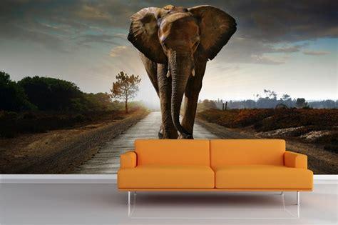 elephant wallpaper for walls uk elephant mural wallpaper against the wall pinterest