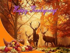 happy thanksgiving images 2017 download funny thanksgiving pictures