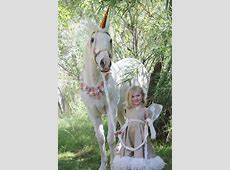 Equinely Spooky: 25 Best Horse Halloween Costumes Miniature Elephant