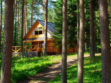 log cabin maintenance keeping the bugs out cabin living