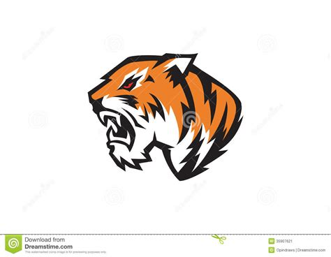 tiger head stock image image 35907621
