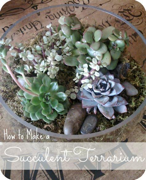 Make Plant - goat lulu how to make a succulent terrarium