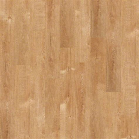 Kitchen Cabinets Tampa Wholesale by Best Beach Wood Flooring Gallery Flooring Amp Area Rugs