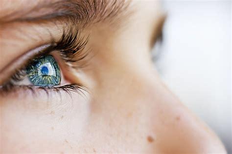 imagenes de ojos verdes y azules todo sobre el color de ojos azules verdes o marrones