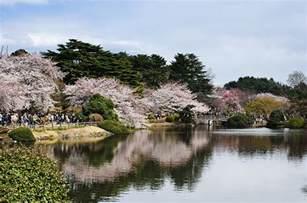 hamarikyu gardens the guide tokyostreetview