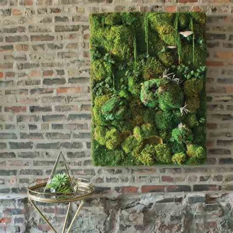 how to build a decorative moss wall farm and garden