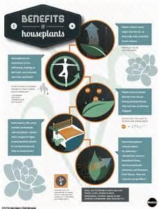 benefits of houseplants the benefits of houseplants an infographic indoor