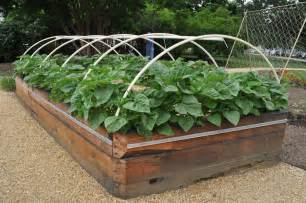 raised bed vegetable gardening easier gardening ideas front yard landscaping ideas