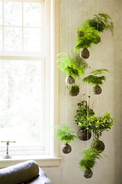 Best Decorating Blogs by 10 Refreshing Vertical Garden Ideas Wave Avenue