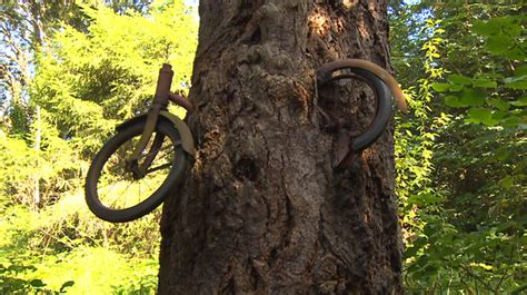 Vintage Bike Still Alive Today 0055 Casing For Sony Xperia Z4 Hardcase vashon island washington the real story a boy left his bike chained to a tree when he
